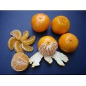 Cuties Oranges California Grown  Clementines  Fresh Fruits 3 Pound Bags