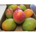8 Selected Sweet and Juicy Fresh Large Mango Fruit - 9 Lb Pounds